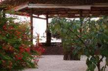 hotel-de-la-plage-ifaty-tulear05
