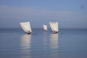 Balade en pirogue à voile - Hôtel de la plage Tuléar Ifaty